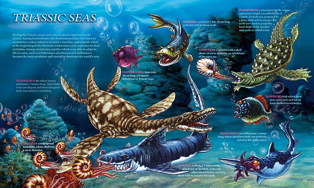 TRIASSIC SEAS